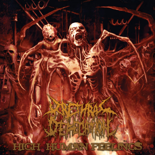 Urethral-Defecation