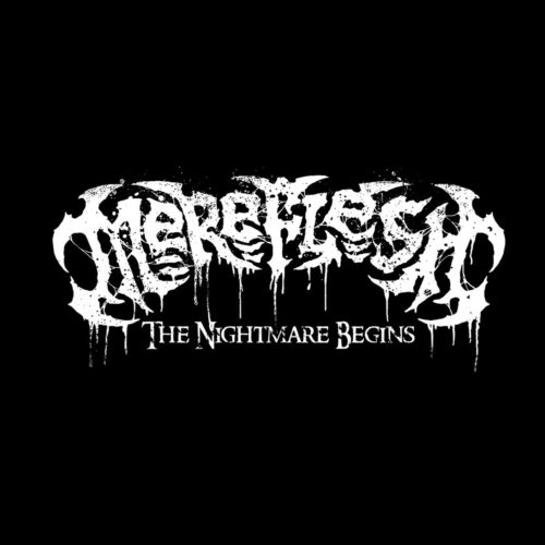 MEREFLESH-ARTWORK-WEB